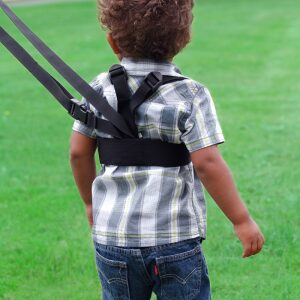 Diono Sure Steps Safety Harness