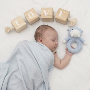 Living Textiles Jersey Swaddle & Rattle Gift Set