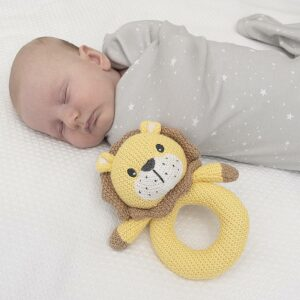 Living Textiles Whimsical Knitted Ring Rattle
